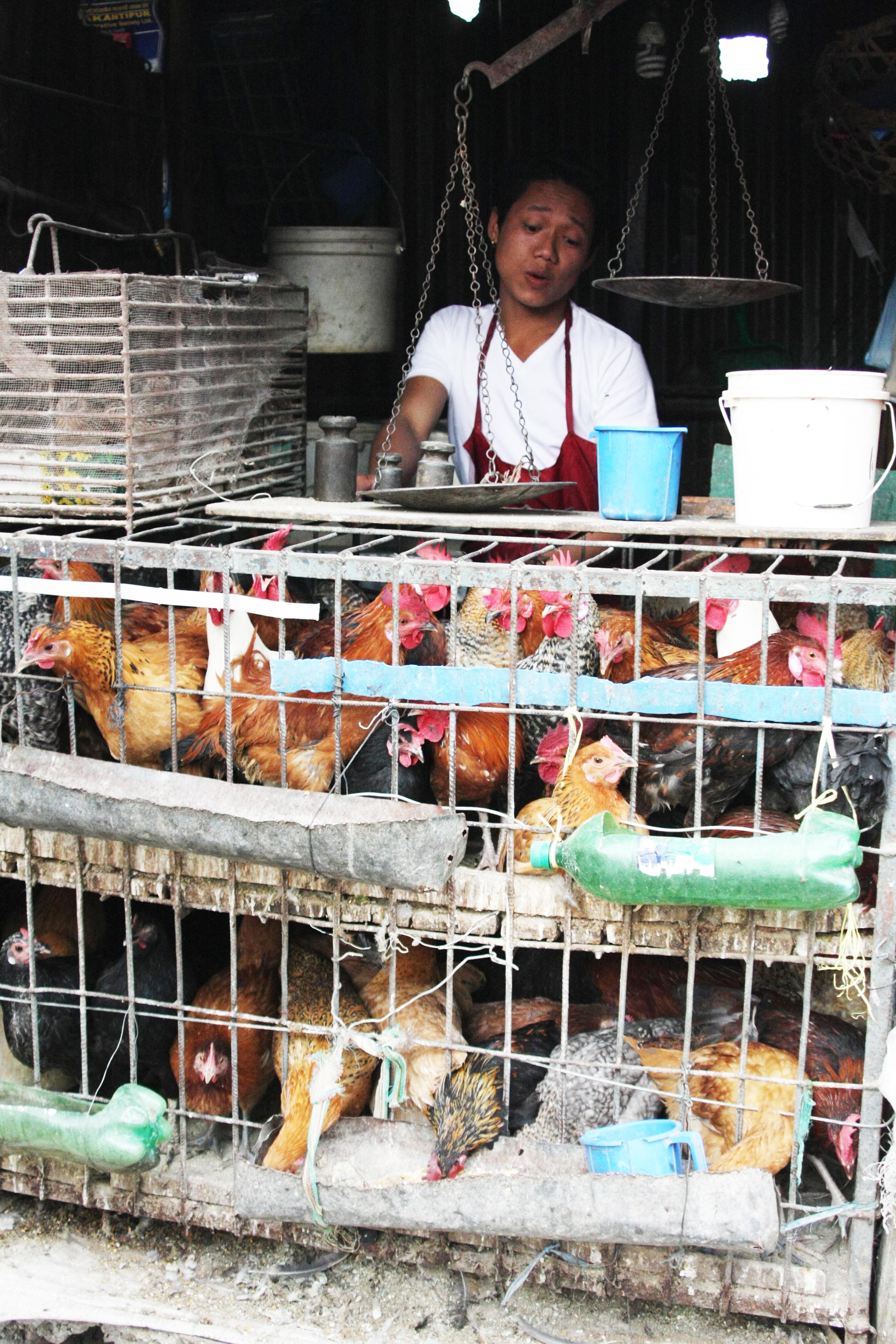 Markt Kathmandu