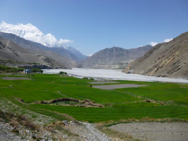 Annapurna Circuit. Marpha.