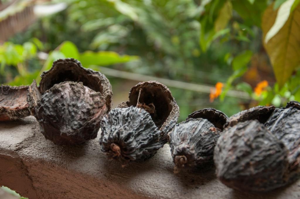 Schokoladenfabrik_Mindo_Ecuador